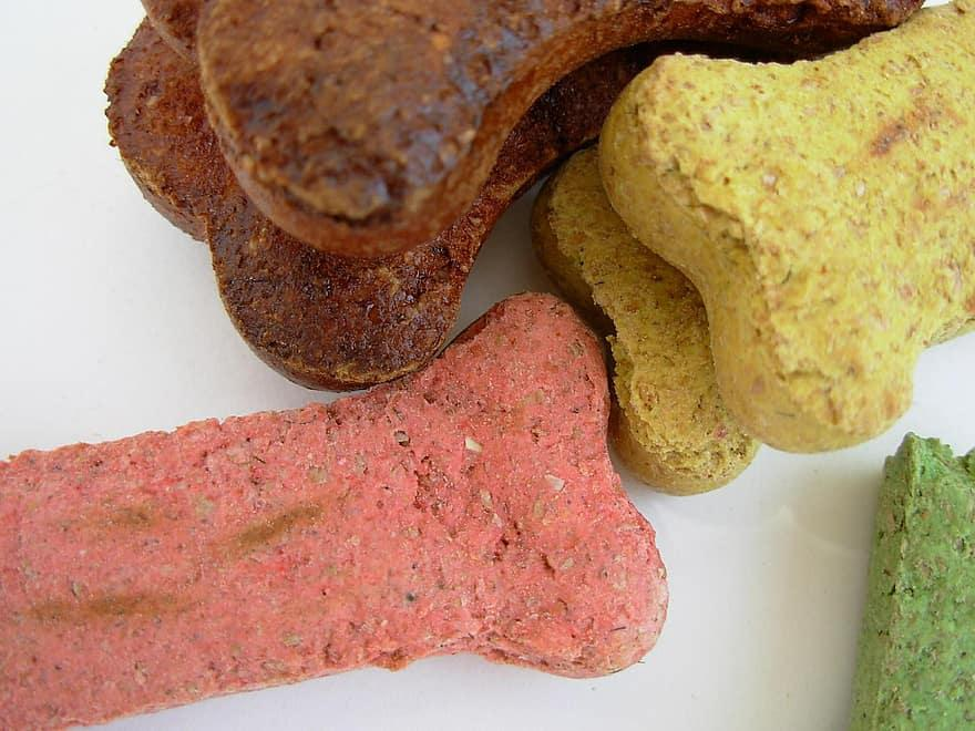 All You Should Know About CBD Dog Treats